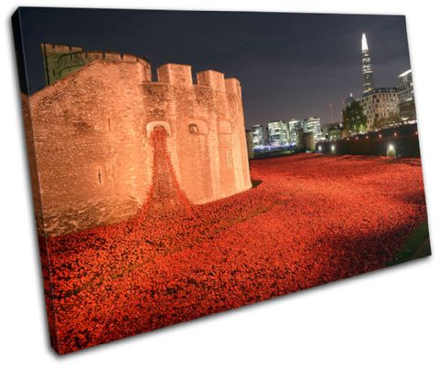 Tower of London Poppies City - 13-2234(00B)-SG32-LO